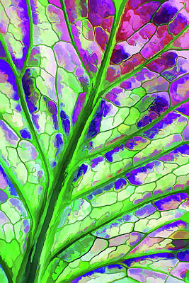 Digital Art - Colorful Coleus Abstract 4 by ABeautifulSky Photography by Bill Caldwell
