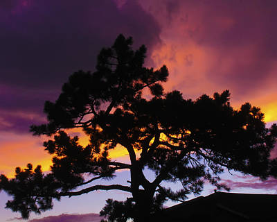 Photograph - Colorful Colorado Sunset by Perspective Imagery