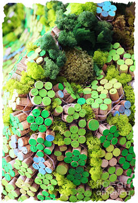 Photograph - Colorful Cork by Lori Mellen-Pagliaro