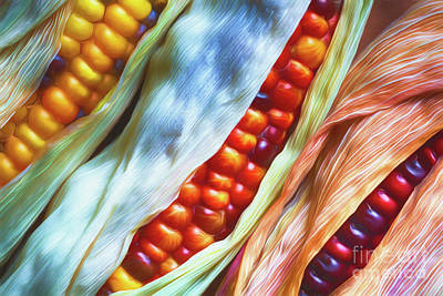 Still Life Digital Art - Colorful Corn 3 by Veikko Suikkanen