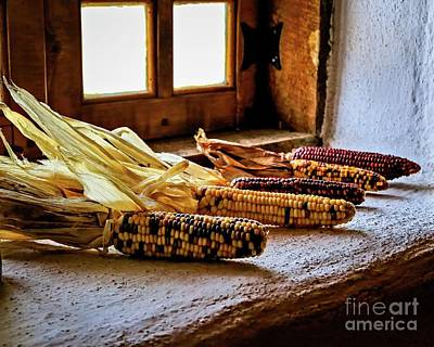 Photograph - Colorful Corn by Jon Burch Photography
