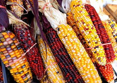 Colorful Corn Original
