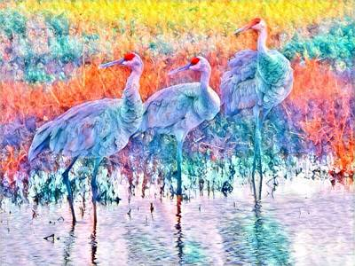 Photograph - Colorful Cranes by Kimberly Woyak