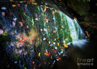 Photograph - Colorful Creek by Patrick M Lynch
