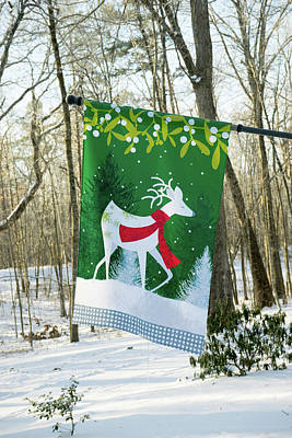 Photograph - Colorful Deer Flag In The Winter Snow by Douglas Barnett