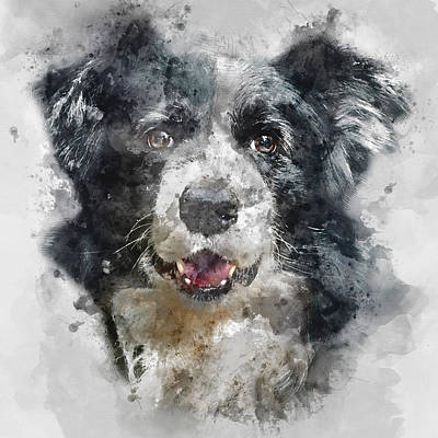 Dog Close-up Painting - Colorful Dog Portrait 2 - By Diana Van by Diana Van