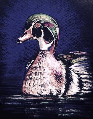 Drawing - Colorful Duck by Alban Dizdari