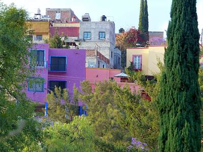 Photograph - Colorful Dwellings In Guanajuato by Rosanne Licciardi