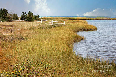 Photograph - Colorful Edgartown Marsh by Carol Groenen