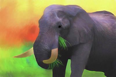 Photograph - Colorful Elephant by Kay Kochenderfer