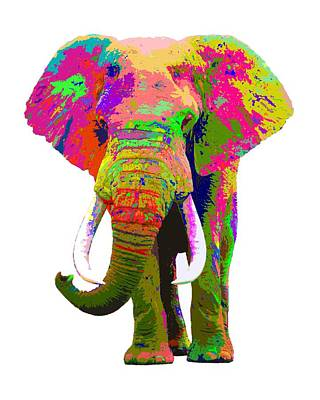 Painting - Colorful Elephant by Samuel Majcen