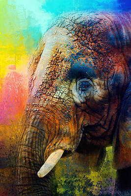 Photograph - Colorful Expressions Elephant by Jai Johnson