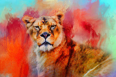 Photograph - Colorful Expressions Lioness by Jai Johnson