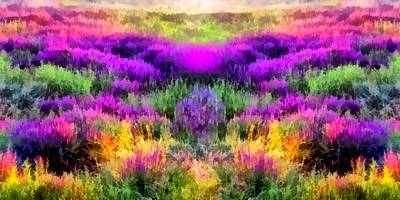 Colorful Field Of A Lavender Art Print by Anton Kalinichev