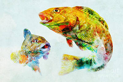 Mixed Media - Colorful Fish Art by Olga Hamilton