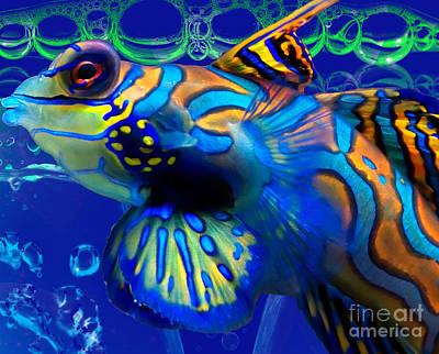 Digital Art - Colorful Fish by Serena Ballard