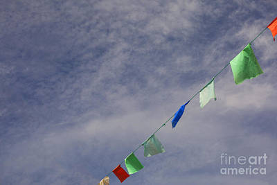 Flutter Photograph - Colorful Flags by Patricia Hofmeester
