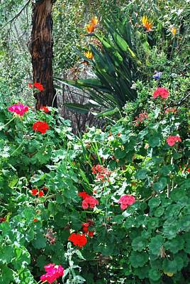 Photograph - Colorful Flowers In Garden - Vertical by Matt Harang