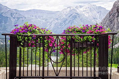Photograph - Colorful Flowers On The Wrought Iron Fence by Lucinda Walter