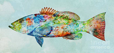 Mixed Media - Colorful Gag Grouper Art by Olga Hamilton