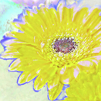 Photograph - Colorful Gerbera by Natalie Rotman Cote