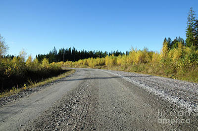 Photograph - Colorful Gravel Road by Kennerth and Birgitta Kullman