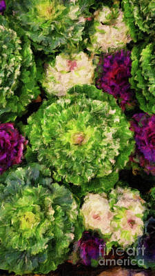 Cauliflower Digital Art - Colorful Green, White And Purple Flowers Painting by Amy Cicconi