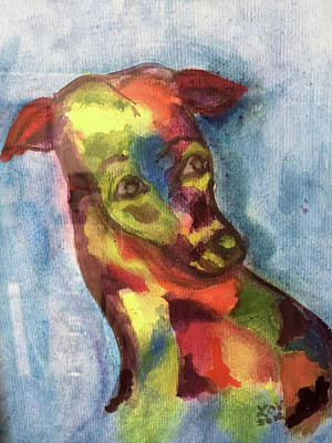 Painting - Colorful Greyhound by Lucille Valentino