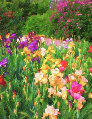 Digital Art - Colorful Grouping Of Big Iris Flowers by Barbara Rogers