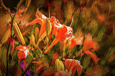 Photograph - Colorful #h2 by Leif Sohlman