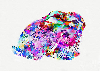 Mixed Media - Colorful Hare Art by Olga Hamilton