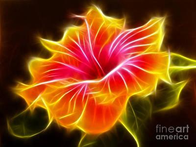 Colorful Hibiscus Flower Art Print by Pamela Johnson