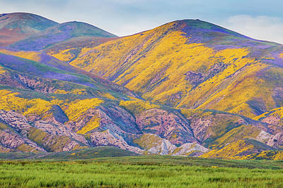 Photograph - Colorful Hills At Sunset by Marc Crumpler
