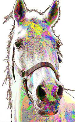 Painting - Colorful Horse by Samuel Majcen