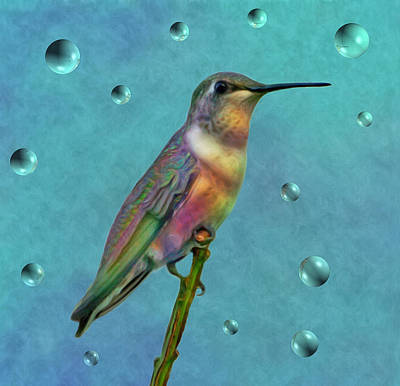 Photograph - Colorful Hummingbird by Sandy Keeton
