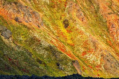 Photograph - Colorful Icelandic Mountains #8 by Stuart Litoff