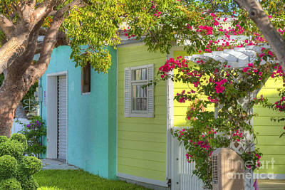 Floral Vintage Window Photograph - Colorful Island Home by Juli Scalzi