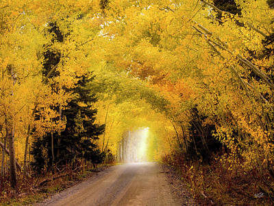Photograph - Colorful Journey by Leland D Howard