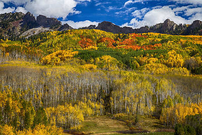 James Insogna Photograph - Colorful Kebler Pass Fall Foliage by James BO  Insogna