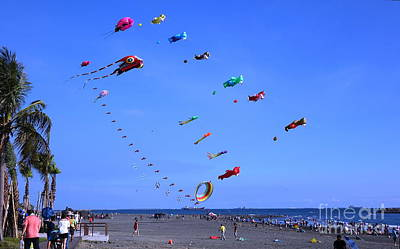Photograph - Colorful Kites During Beach Festival by Yali Shi
