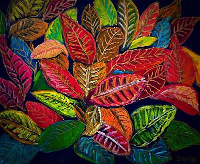 Painting - Colorful Croton Leaves by Anne Sands