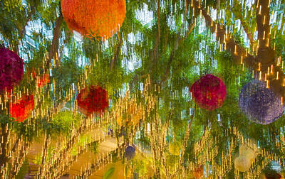 Photograph - Colorful Lights And Flowers by Susan Stone