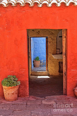 Photograph - Colorful Living by Patricia Hofmeester