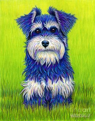 Drawing - Colorful Miniature Schnauzer Dog by Rebecca Wang