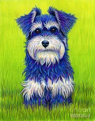 Drawing - Colorful Miniature Schnauzer Dog by Rebecca Wang