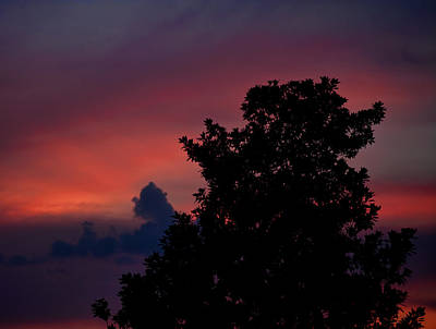 Photograph - Colorful Mississippi Sky 4 by Cathy Jourdan