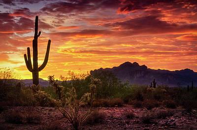 Photograph - Colorful Morning Skies  by Saija Lehtonen