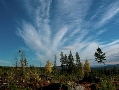 Photograph - Colorful Mountain In Swedish Lapland by Tamara Sushko
