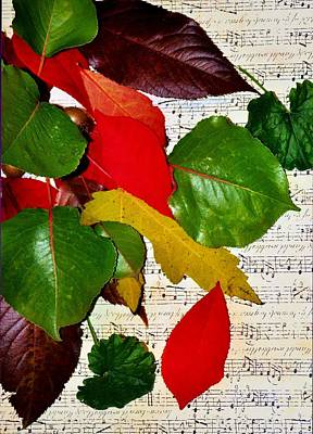 Photograph - Colorful Music by Michelle McPhillips