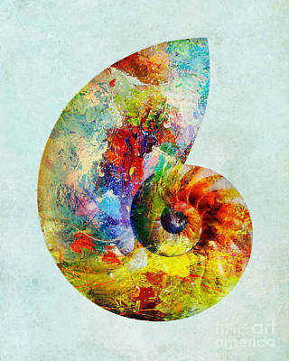 Mixed Media - Colorful Nautilus Art by Olga Hamilton
